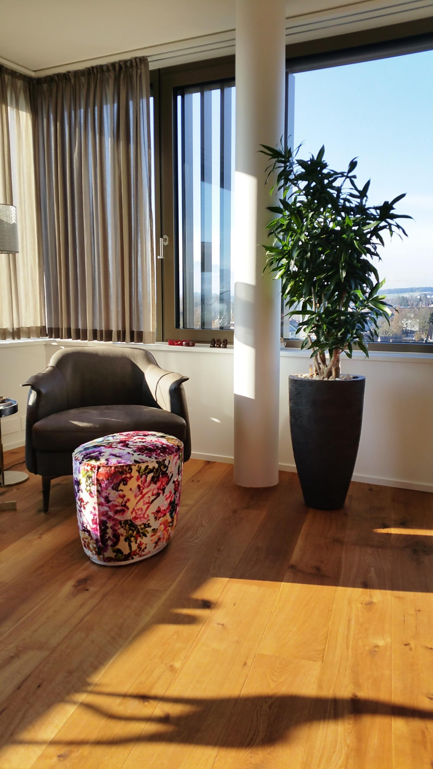 wohnzimmer pflanzen | jtleigh - hausgestaltung ideen